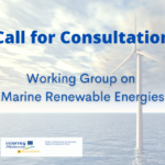 Call for consultation: WG on Marine Renewable Energy